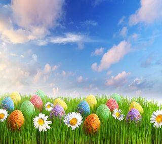 Обои на телефон яйца, пасхальные, цветы, трава, сезон, время, весна, spring time