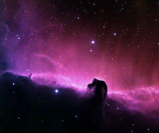 Обои на телефон голова, туманность, лошадь, космос, horse head nebula