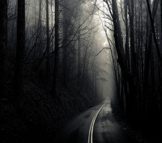 Обои на телефон дьявол, черные, тьма, темные, природа, лес, естественные, дерево