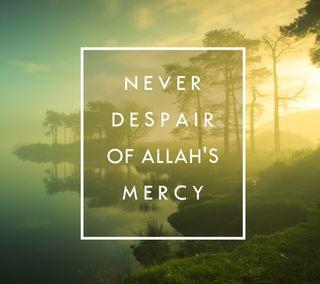 Обои на телефон каран, религия, никогда, мусульманские, исламские, ислам, бог, аллах, never despair