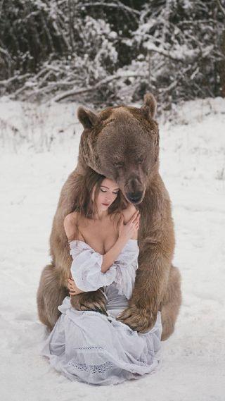 Обои на телефон медведь, медведи, grizzly