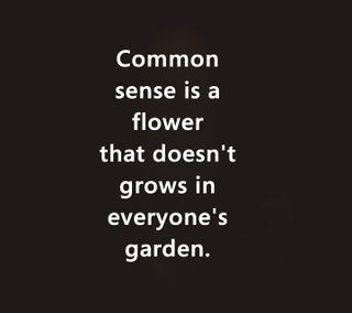 Обои на телефон сад, цитата, цветы, смысл, приятные, поговорка, новый, жизнь, grows, common