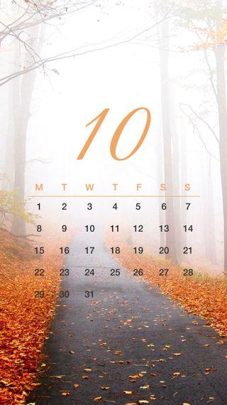 Обои на телефон календарь, путь, октябрь, zedgeoct18, october path