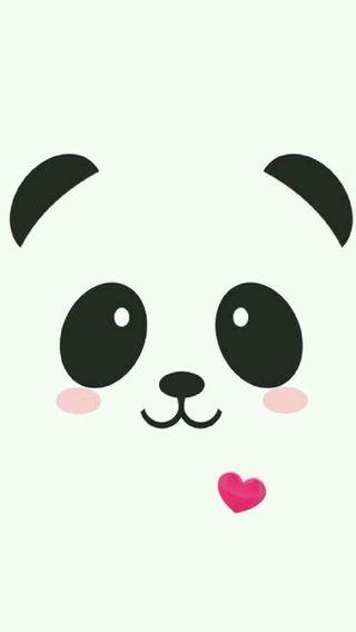 Обои на телефон панда, животные