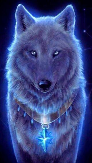Обои на телефон спокойствие, волк