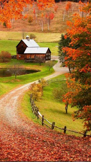 Обои на телефон спокойные, прекрасные, оранжевые, дом, peaceful house