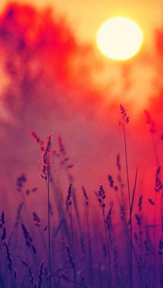Обои на телефон солнце, пейзаж, закат