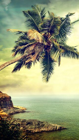 Обои на телефон пальмы, ретро, океан, небо, море, камни, вода, винтаж, water sea