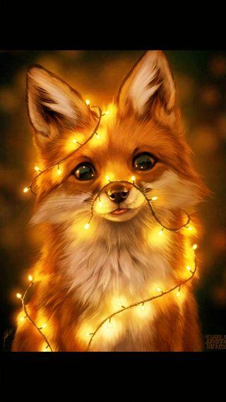 Обои на телефон теплые, лиса, свет, огни, light fox