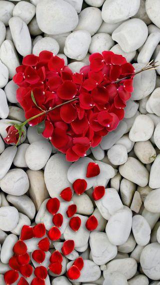 Обои на телефон камни, сердце, розы, любовь, красые, pedals, love, heart of rose