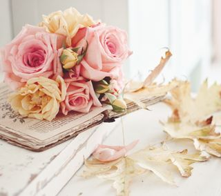 Обои на телефон лепестки, цветы, фон, розы, розовые, винтаж