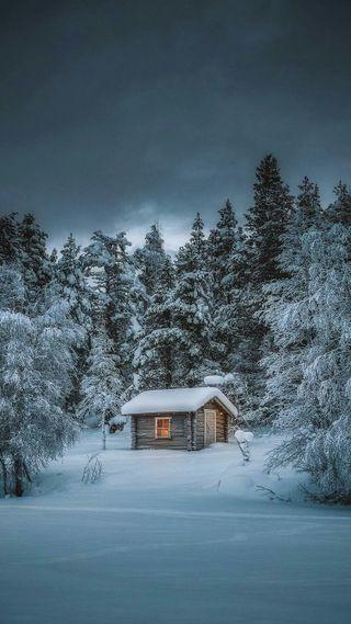 Обои на телефон дом, природа, лес, зима, домик