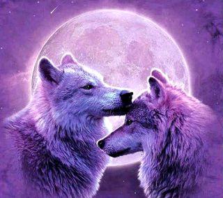 Обои на телефон прекрасные, волк