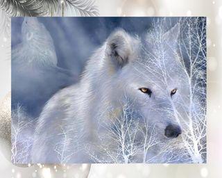 Обои на телефон собаки, духовные, волк, spiritual wolf