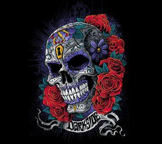Обои на телефон череп, розы