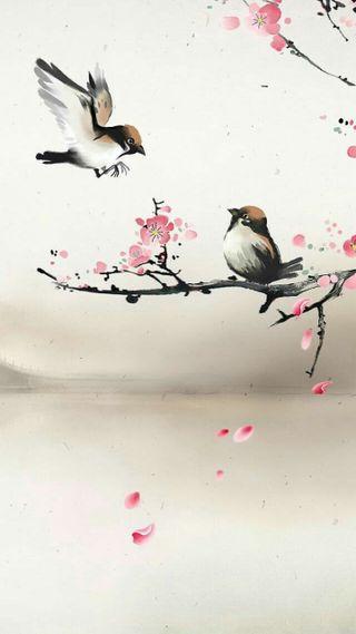 Обои на телефон птицы, любовь, дерево, love