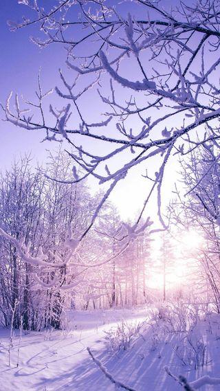 Обои на телефон холод, приятные, прекрасные, зима, beautiful winter