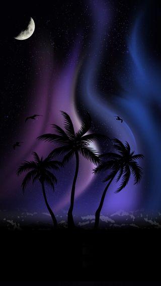 Обои на телефон пальмы, фиолетовые, синие, северный, огни, ночь, луна, звезды, деревья, northern lights, nighttime, moonlit palms