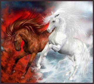 Обои на телефон лошади, приятные