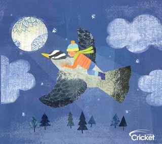 Обои на телефон крикет, снег, рождество, птицы, праздник, зима, Winter, Snow, Holiday, Cricket, Christmas, Cartagena