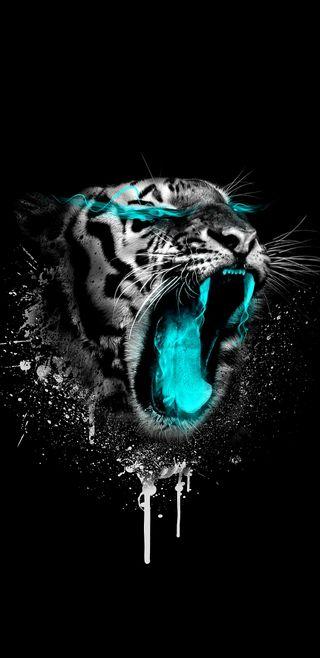 Обои на телефон чудо, тема, черные, тигр, коты, белые, безумные, bule