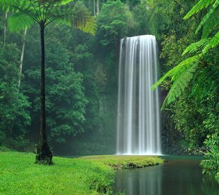 Обои на телефон прекрасные, водопад, lg, g3, beautiful waterfall, 2880x2560