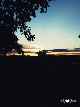 Обои на телефон изображения, тропические, закат