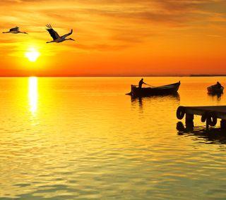 Обои на телефон рыбалка, восход, птицы, природа, море, лодка