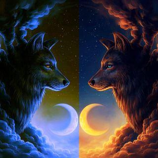 Обои на телефон стена, луна, волк, wolf wall 7