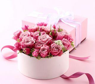 Обои на телефон коробка, цветы, романтика, розы, розовые, подарок, любовь, love
