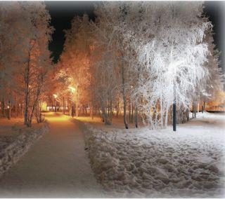 Обои на телефон свет, зима