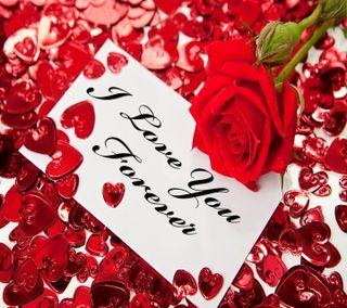 Обои на телефон лепестки, ты, сердце, романтика, розы, любовь, love, i love you