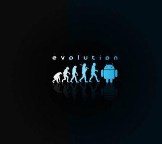 Обои на телефон эволюция, самсунг, забавные, галактика, samsung galaxy s4, funny evolution, 2160x1920