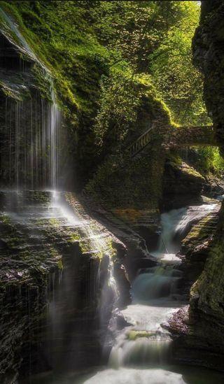 Обои на телефон джунгли, природа, история, водопад, karen story nature