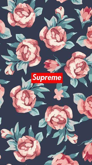 Обои на телефон код, цветы, supreme flower, supreme