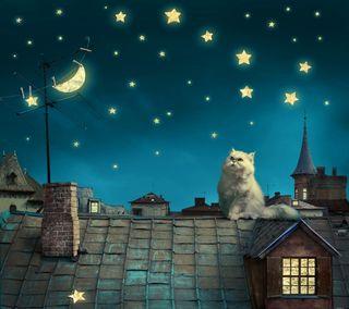 Обои на телефон дом, фон, ночь, магия, луна, кошки, звезды, stars moon, magic night, cat roof house