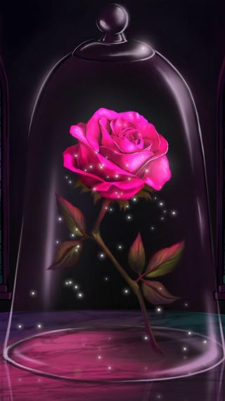 Обои на телефон зверь, супер, синие, розы, мяч, красые, красота, жизнь, short, belle, beauty and beast