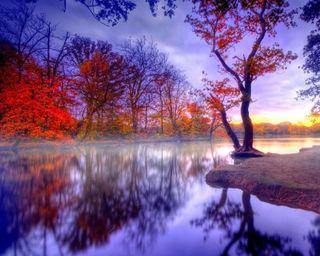 Обои на телефон отражение, природа, абстрактные