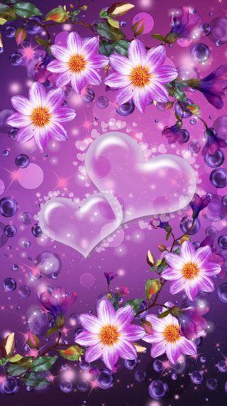 Обои на телефон день, цветы, фиолетовые, сердце, 720x1280px