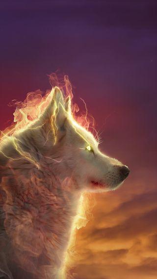 Обои на телефон огонь, глаза, волк, the wolf