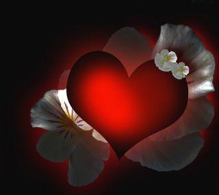 Обои на телефон черные, цветы, сердце, любовь, красые, день, 2160x1920px, love