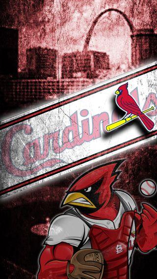Обои на телефон бейсбол, mlb, cardinals