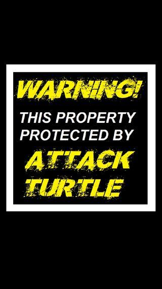 Обои на телефон черепаха, предупреждение, забавные, атака, protected