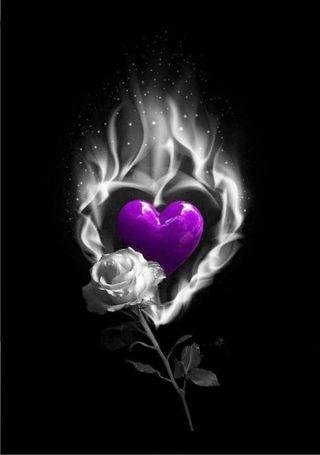 Обои на телефон сердце, розы