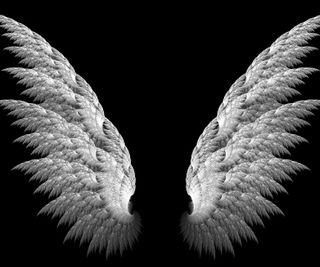 Обои на телефон крылья, приятные, новый, крутые, другие, hd, 3д, 3d, 2013