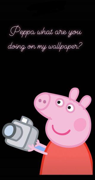 Обои на телефон мем, симпатичные, свинья, привет, мемы, крутые, еда, девушки, peppa meme, peppa, hello