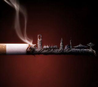 Обои на телефон сигареты, рокки, приятные, правда, новый, комедия, дым, высказывания, smoking kills hd, cigratte, 2012