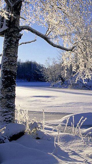 Обои на телефон солнечный свет, зима, вода