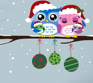 Обои на телефон сова, счастливое, рождество
