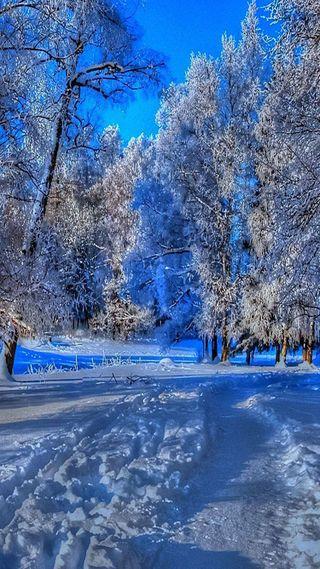 Обои на телефон прогулка, снег, путь
